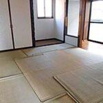 和室(ゴザは日焼け防止のため)